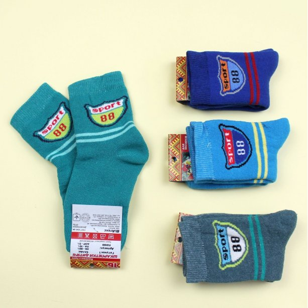 Детские носки для мальчика на махре с рисунком тм Виатекс размер 16